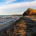 Sheldon Marsh - Autumn Beach 2 by SRowe Art