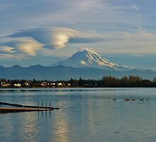 A Year with Mt. Rainier by marialberg