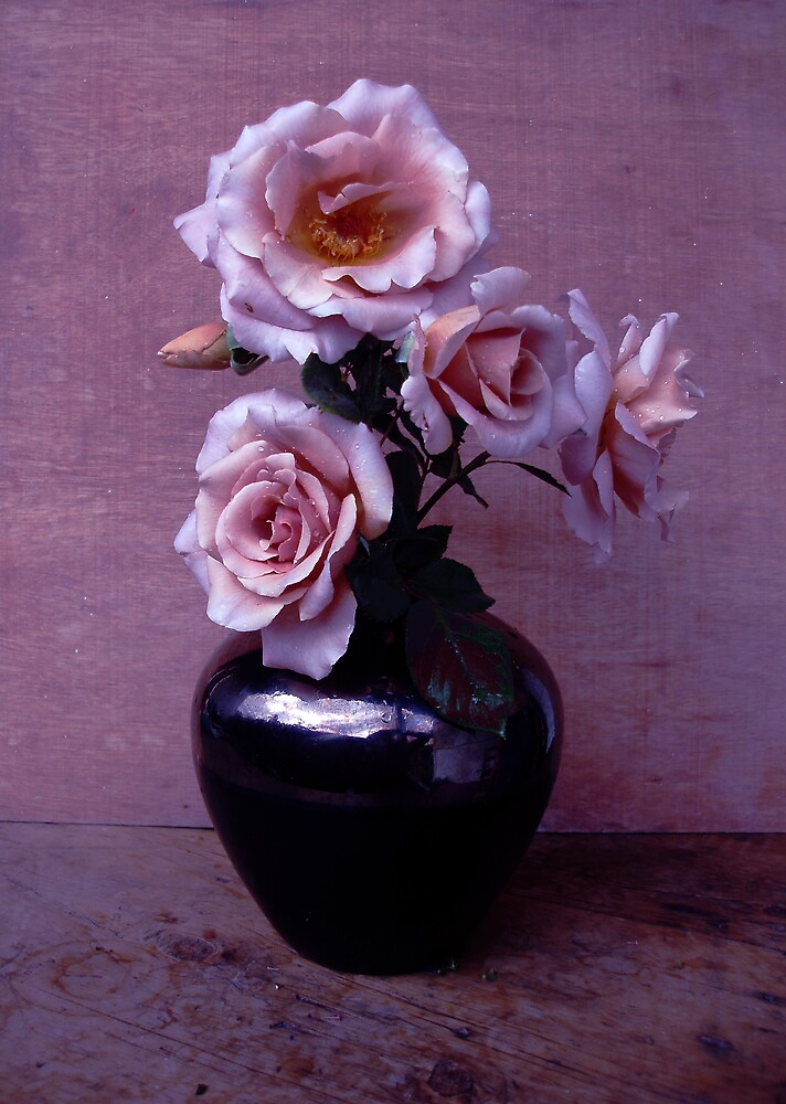 Roses  by Carolyn