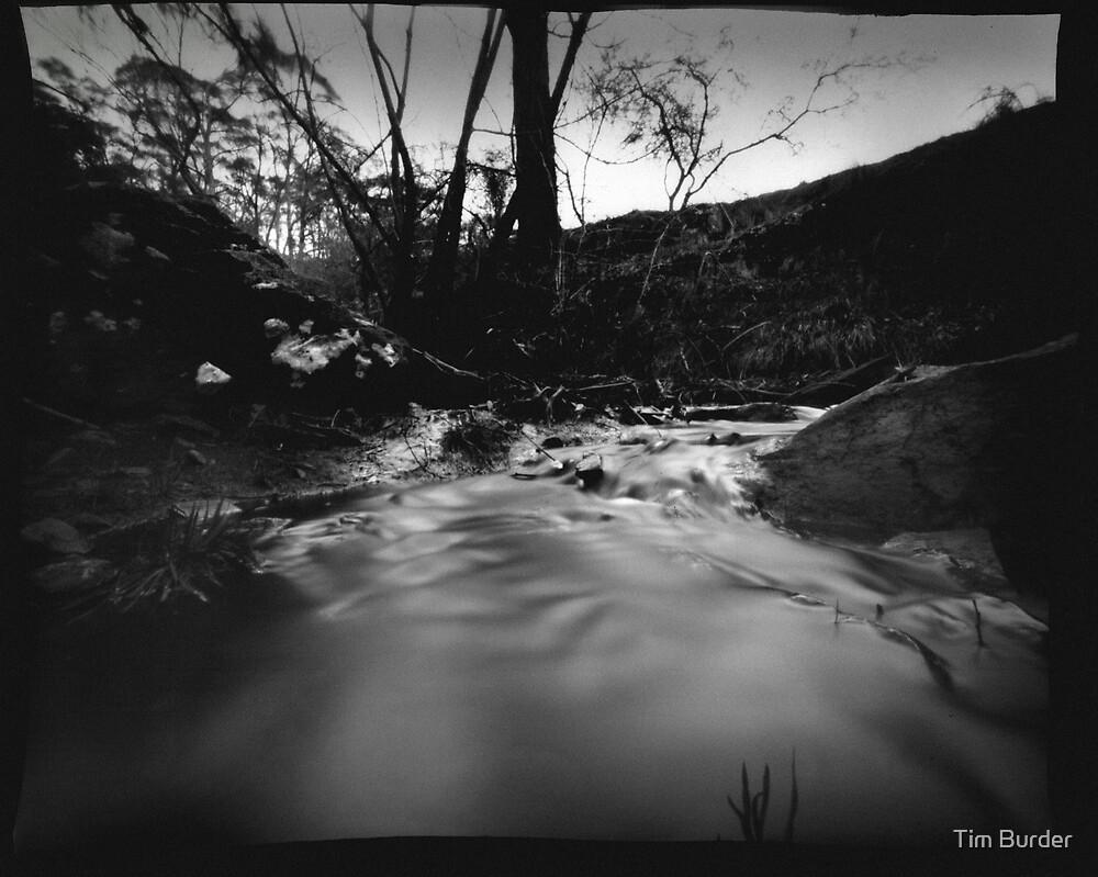 Creek by Tim Burder