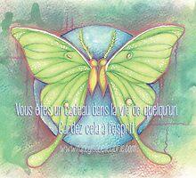 Cadeau papillons by Nancy Isabelle Labrie