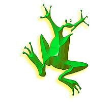 GREEN FROG, Jumping Jehoshaphat! Help! its the Green frog! Photographic Print