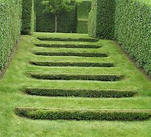 Hedges in Paul Bangay's Garden by brendak