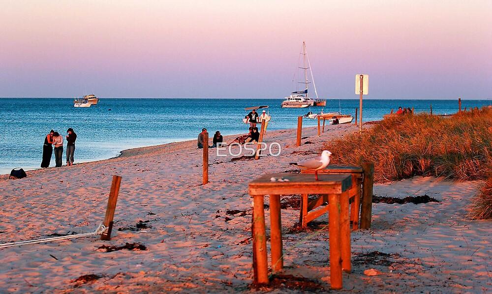 Monkey Mia Beach At Sunset  by EOS20