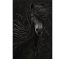 Night Horse Photographic Print