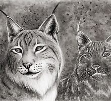 Ever Watchful Eurasian Lynx by Mariya Olshevska