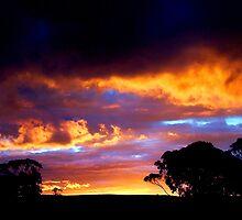 Tasmanian Sunset by Jodi Turner