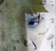Hidden Artemis by Antaratma Images