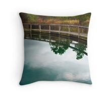 limpid coil Throw Pillow