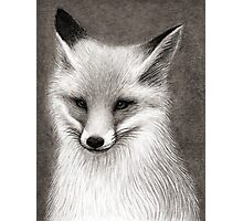 Inari the Fox Photographic Print