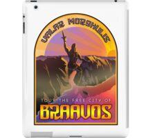 Braavos Travel iPad Case/Skin