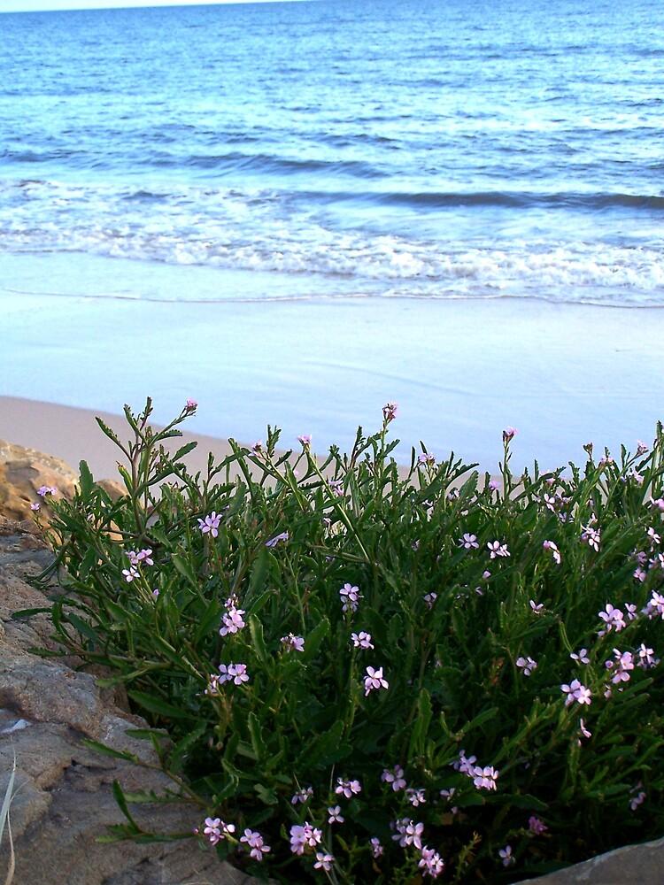 By the Seaside by Princessbren2006