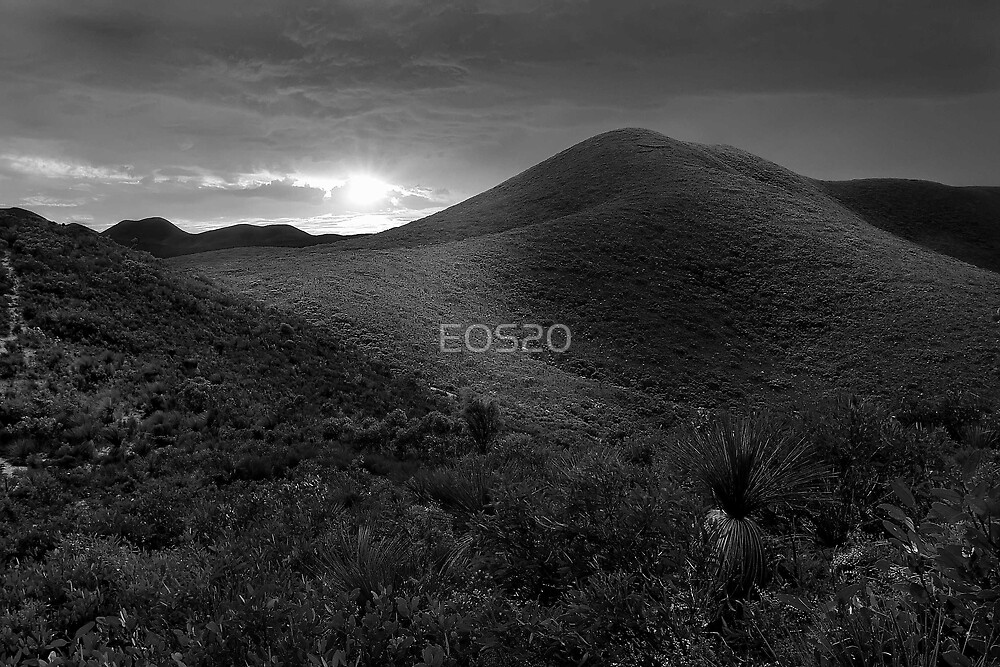 Bathed In Light  by EOS20