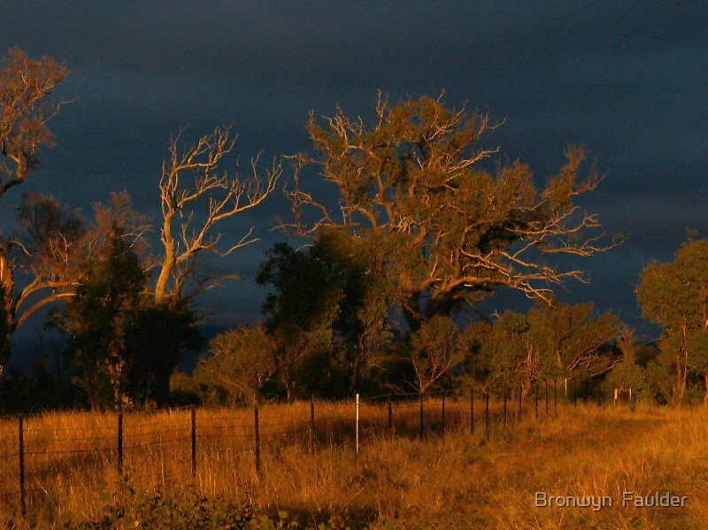 Dawn Breaks Over Our Land by Bronwyn  Faulder