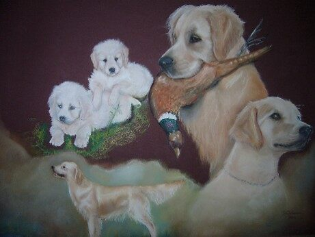 The Goldens of Zynagi. by uniqueartworks