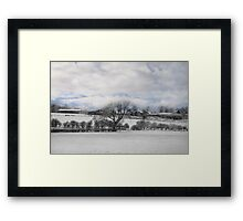Oh Lonely Tree Framed Print