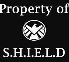 Property of S.H.I.E.L.D by ly-dia