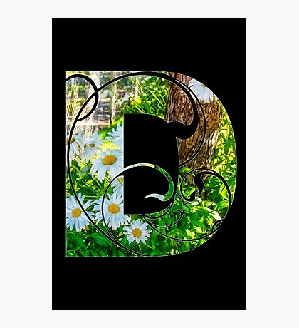 D is for daisy Photographic Print