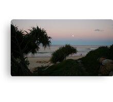 Shrubs and Beach Canvas Print