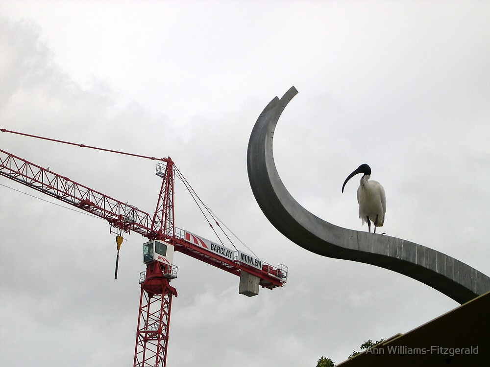 Two Cranes by Ann Williams-Fitzgerald