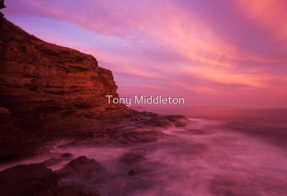 coastal light II by Tony Middleton