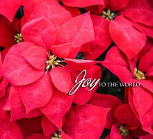 Joy to the World Greeting Card by MaryTimman