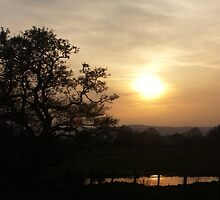WEARDALE SUNSET by NorthernWitch