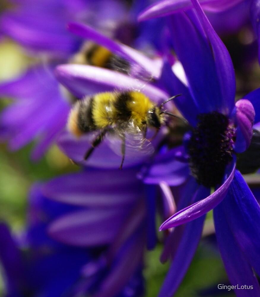 Bumble-Bee by GingerLotus