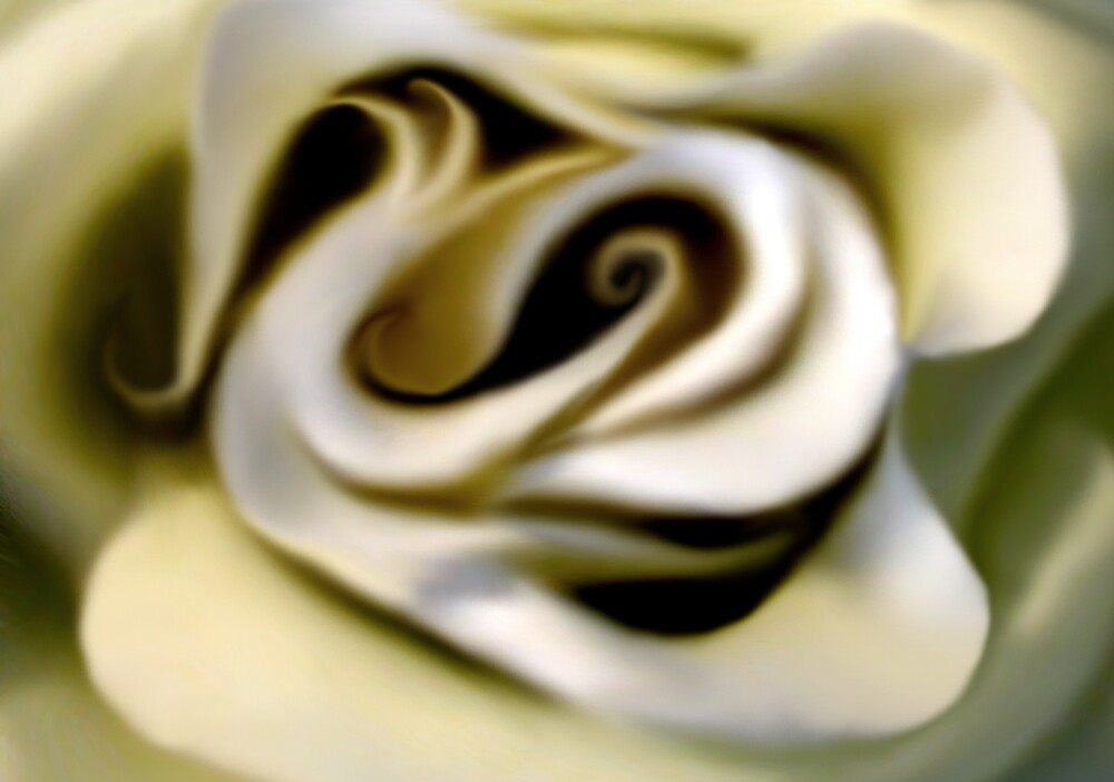 Rose Curves by Cliff Vestergaard