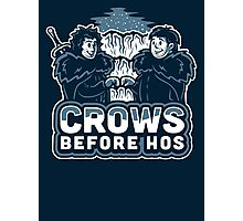 Crows before Hos Photographic Print