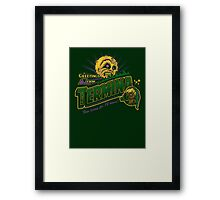 Greetings from Termina! Framed Print