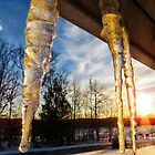 icicles at sunset (2017) by Stephanie M. Aughenbaugh