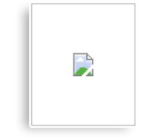 Broken Internet Image Icon Canvas Print