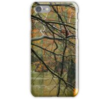 Heavy Rain In The Swamp iPhone Case/Skin