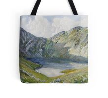 The Minffordd Path to Cader Idris. Tote Bag