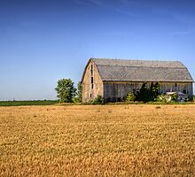 The Wheat Field Barn by thejdawg