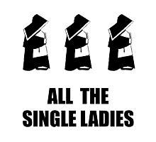All The Single Ladies Photographic Print