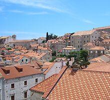 Dubrovnik - pearl of Mediterranean by darioo