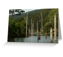 Lake Elizabeth Otway's Greeting Card