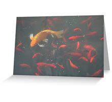 orange goldfish in the water Greeting Card