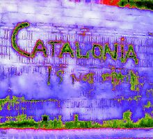 Catalonia is not Spain by George Hunter