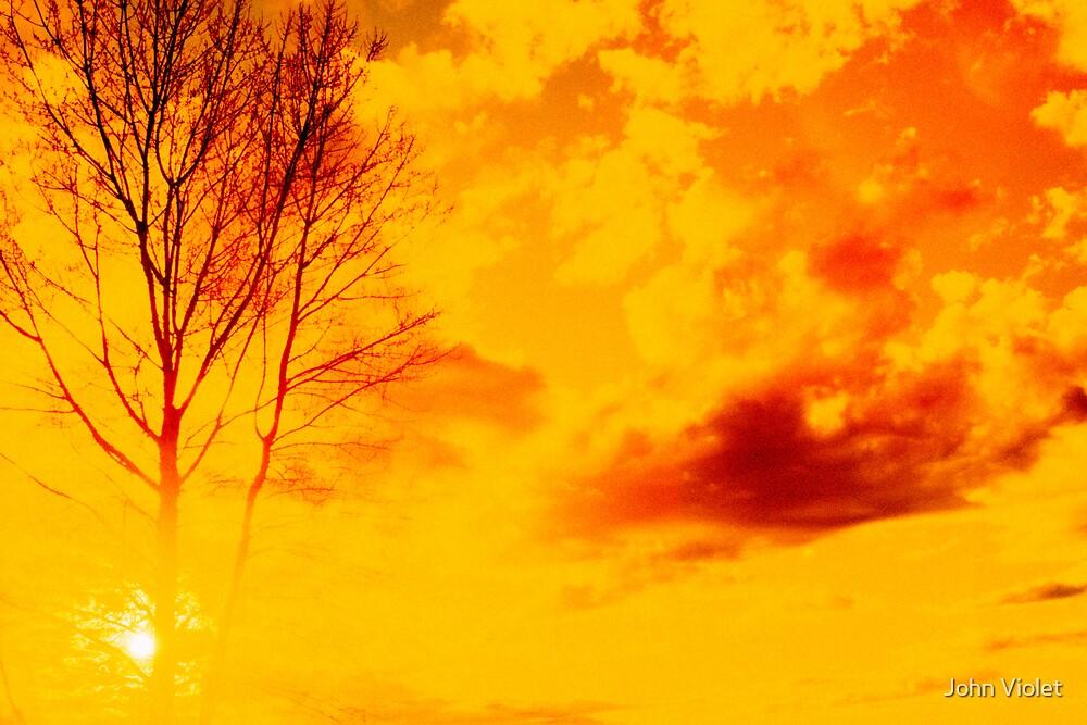 Orange Sunset by John Violet