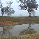 Reflections in the fog by langar