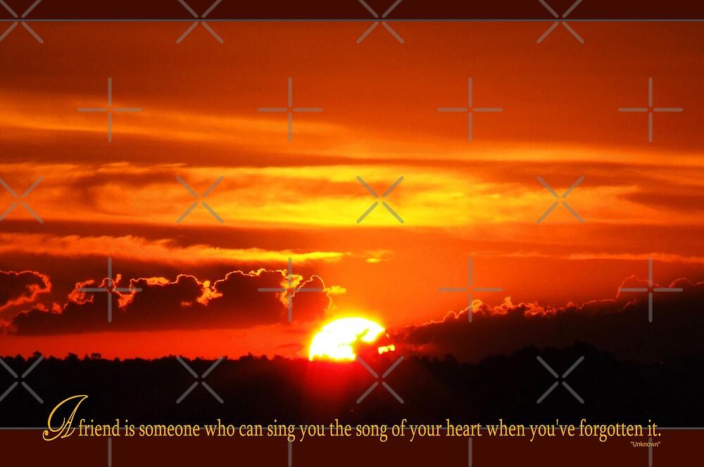 a gift of a friend.. by webgrrl