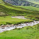 Eastern Highland Stream, Scotland by fotosic