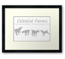 Gray Goats Framed Print