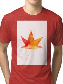 The colourful Sugargum leaf Tri-blend T-Shirt