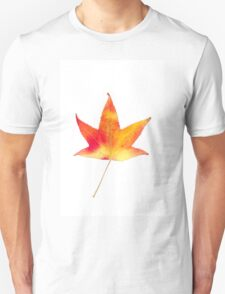 The colourful Sugargum leaf Unisex T-Shirt