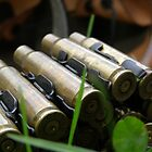 .308 Winchester. by Vulcha