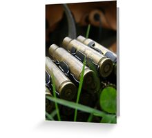 .308 Winchester. Greeting Card